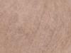 488 Šviesiai ruda